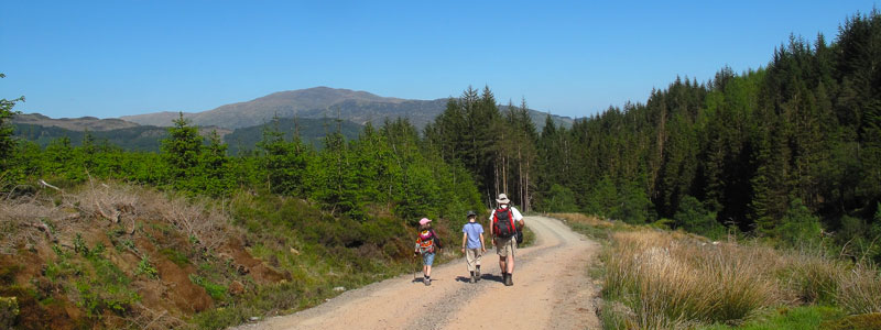 There are miles of walking routes around the cottage